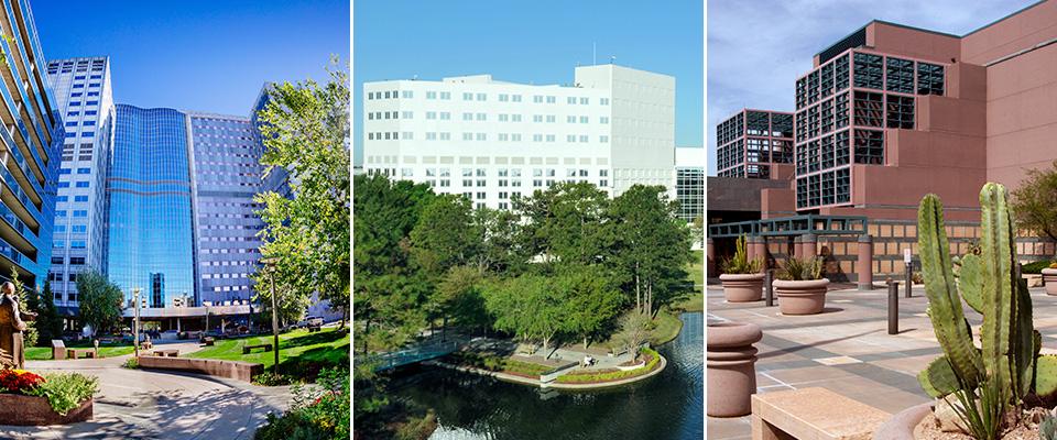Mayo Clinic School of Medicine - Mayo Clinic