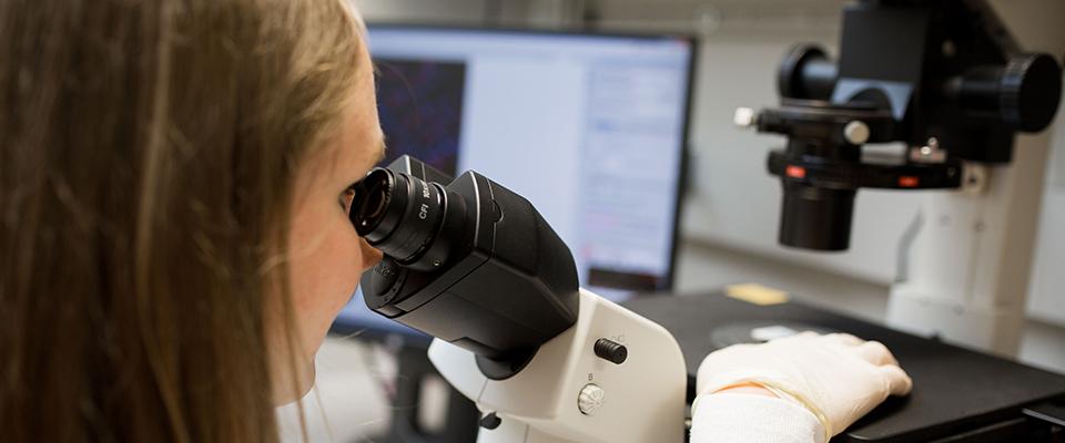Regenerative Sciences Training Program - Center for Regenerative