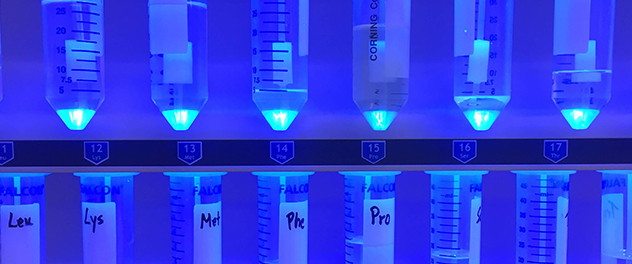 Peptide synthesis in progress at Mayo Clinic's Proteomics Core in Minnesota.