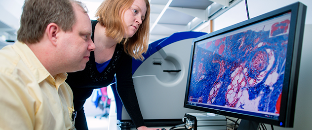 The Pathology Research Core at Mayo Clinic provides histological & tissue services, microscopy slides, tissue microarray construction & immunostaining.