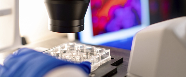 The Mayo Clinic Van Cleve Cardiac Regenerative Medicine Program develops next-generation stem cell therapies.