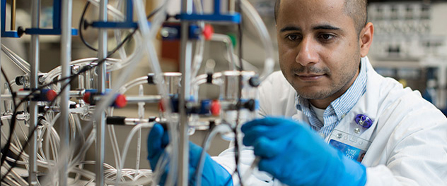 Postdoctoral research fellow Dr. Yogesh Bhattarai in the Gut Microbiome Laboratory of Dr. Purna Kashyap at Mayo Clinic