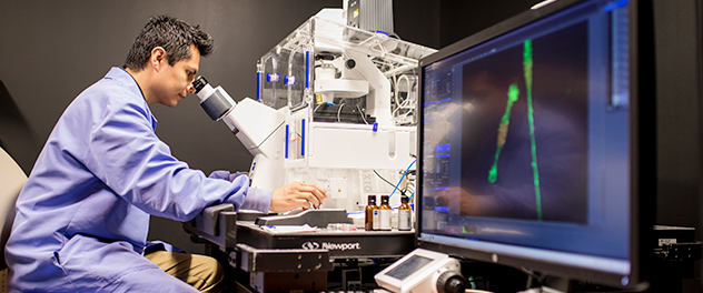Research fellow examining tissue in Mayo Clinic's Neurogenesis and Brain Tumors Lab