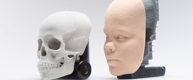 3D model for facial plastic and reconstructive surgery