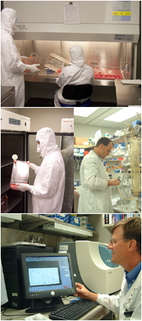 Viral Vector Production Laboratory