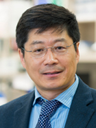 Guojun Bu, Ph.D., is the associate director of the Mayo Clinic Center for Regenerative Medicine in Jacksonvile, Florida.