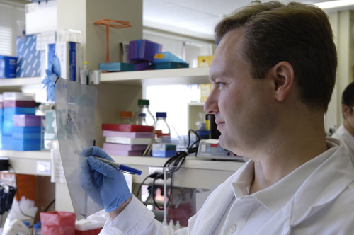 Eric Marrotte, visiting student looking at a western blot result.